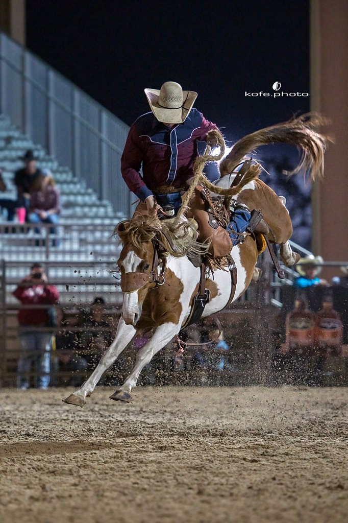 Flagler First Annual DCJR Ram Rodeo. December 1-2, 2017